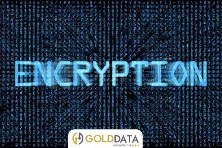 Encrypted Uzantılı Dosya Kurtarma